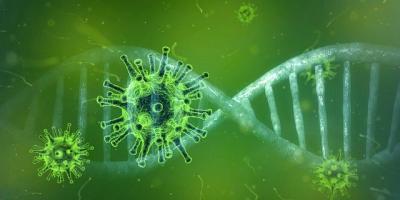 Vorschaubild zur Meldung: Informationen zum Corona-Virus