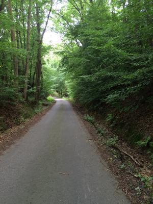 Foto zur Meldung: GRÜN KAPUTT - Dorf- und Landschaftsentwicklung