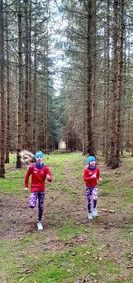 Das Foto zeigt Kinder beim Waldlauf. Foto: Petra Behn