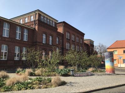 Vorschaubild zur Meldung: Frühjahrsputz am Schulplatz