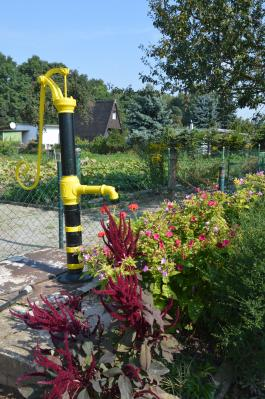 """Foto zur Meldung: 100 Jahre Gartenanlage """"Eigenscholle"""" in Nienburg am Saalealtarm"""