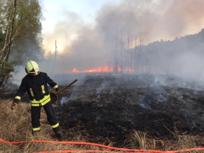 Foto zur Meldung: Waldbrand zwischen Damsdorf und Göhlsdorf