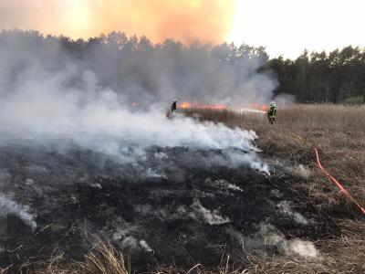 Foto zu Meldung: Waldkontrollen wegen Waldbrandstufe 5