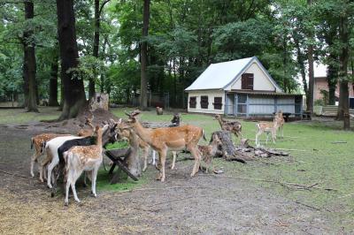Foto zur Meldung: Tiergehege im Schlosspark bleibt weiterhin geschlossen