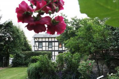 Das Bild zeigt den Garten des Museums (Foto: Marlies Schnaibel).