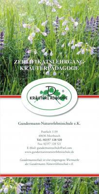 Vorschaubild zur Meldung: Zertifikatslehrgang KRÄUTERPÄDAGOGE Berlin/Brandenburg – Oberkrämer