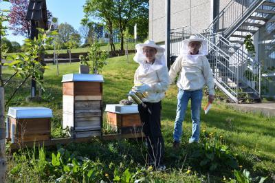 Vorschaubild zur Meldung: Die Bienen warten auf euch