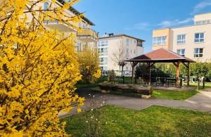 """Vorschaubild der Meldung: Gartenblüte in der Einrichtung """"An der Lauter"""" in Kirchheim an der Teck"""