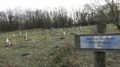 Unser Bild zeigt den Kinderstadtwald.