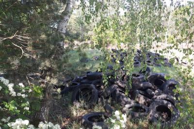 Foto zur Meldung: Wilde Deponien: Höhere Bußgelder könnten helfen
