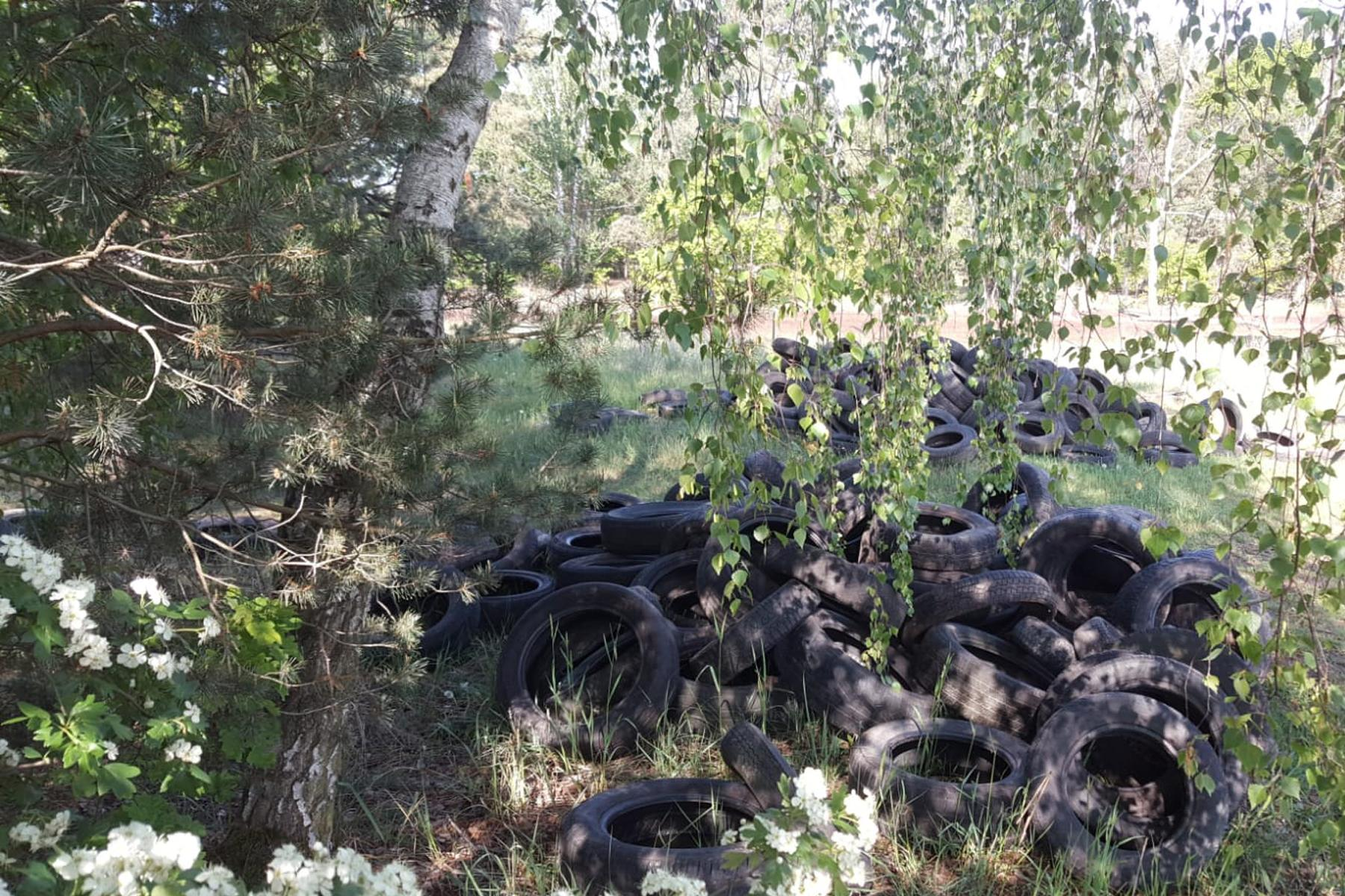 Bild der Meldung: Wilde Deponien: Höhere Bußgelder könnten helfen