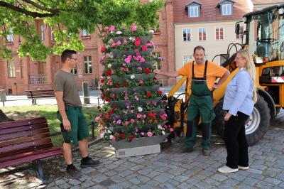 Bürgermeister Nora Görke freut sich über die neuen Blumenkübel