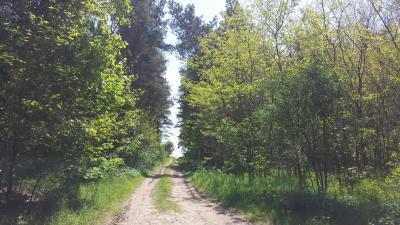 Foto zur Meldung: Neu im Netz: Themenweb zur Förderung und Entlastung privater Waldbesitzer