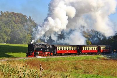 Vorschaubild zur Meldung: +++ Erlebnisreich Selketal - Der MDR unterwegs mit der Selketalbahn, der ältesten Schmalspurbahn im Harz +++