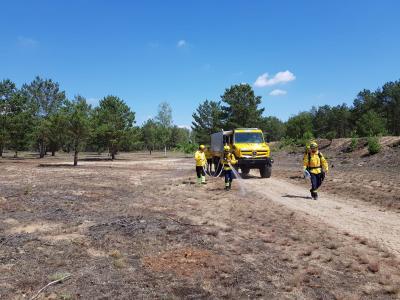 Foto zur Meldung: Waldbrand-Experten üben in Damsdorf