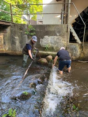 Foto zur Meldung: Fischtreppe vom Treibholz befreit