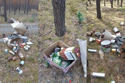 Foto zur Meldung: Zeugenaufruf: Illegale Ablage von Schadstoffen im Wald