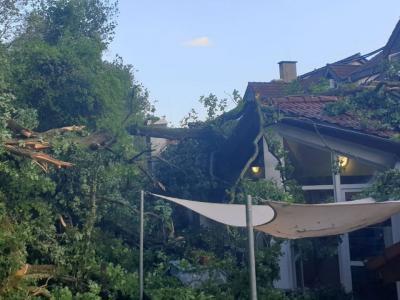 Einsatz - Ortenberg: Baum auf Gebäude