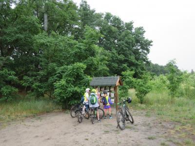 Bild der Meldung: Ferienkinder in Hoppegarten - Wir erkunden den Europa-Wanderweg E 11