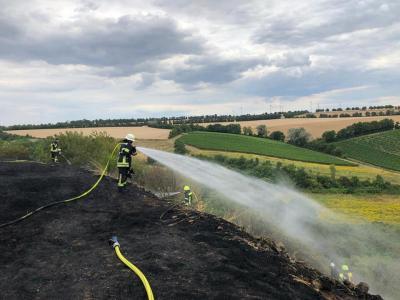 Großer Flächenbrand Aulheimertal