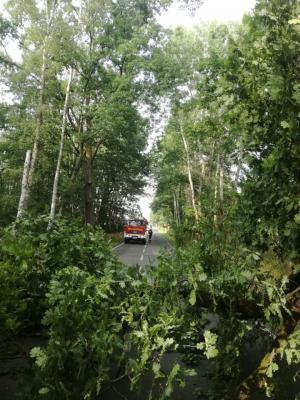Foto zu Meldung: Baum blockierte Straße in Rietz