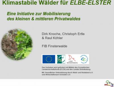 """Vorschaubild zur Meldung: Umfrage bis zum 30.09.2020 - """"Klimastabile Wälder für die Region Elbe-Elster"""""""