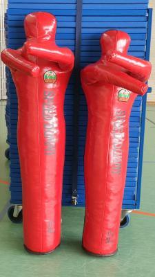 Foto zur Meldung: Neues Judoequipment ist eingetroffen!