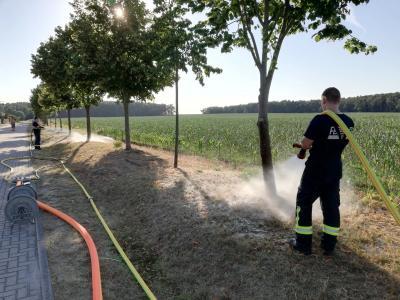Foto zu Meldung: Feuerwehr Rietz wässerte Straßenbäume
