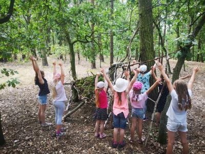 Foto zur Meldung: Erlebnisreiche Sommerferien in der ITBD