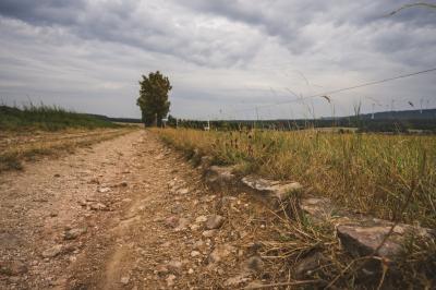 Vorschaubild zur Meldung: Auf den Spuren der alten Römer