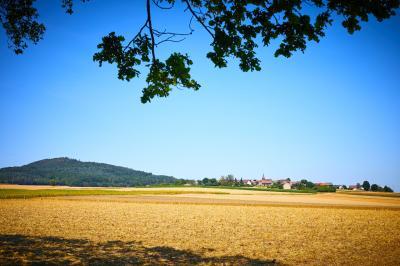 Foto zur Meldung: Gemeinschaftswanderung - Über den Keltenpfad zur Altenburg