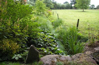 Foto zur Meldung: Kontrast und Harmonie: Hofidylle mit vielfältigen Gartenräumen und einem Erlenbruch