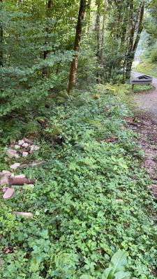 Tatort der illegalen Müllentsorgung neben der Straße zum Besucherbergwerk