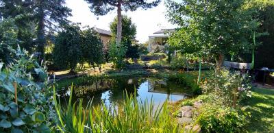 Foto zur Meldung: Großes Interesse am Garten von Gerda und Wolfgang Dost: Rosenkränzchen in Wittstock