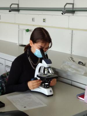 Praktisches Arbeiten im Biologie Leistungskurs