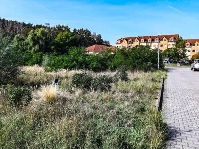 Foto zu Meldung: In Grebs sind zwei neue Großprojekte geplant