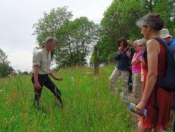 Foto zur Meldung: Hoher Vogelsberg: Mit Biodiversität gegen den Artenschwund
