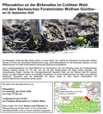 Vorschaubild zur Meldung: Pflanzaktion an der Birkenallee im Colditzer Wald