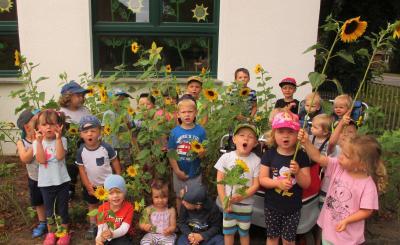 """Foto zur Meldung: Wir - die Gemeindekita """"Sonnenblume"""" in Sülstorf - stellen uns vor!"""