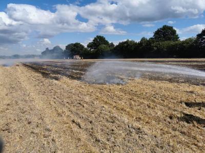 Bild der Meldung: Einsatz # 15/2020 - Feuer Fläche Oering - brennt Stoppelfeld