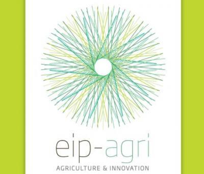 Foto zur Meldung: Weitere 2,5 Millionen Euro für innovative Projektideen in Landwirtschaft und Gartenbau – Anträge bis 15. Dezember einreichen