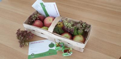 Teilnehmerkarten für die Apfelrallye gibt's beim Apfelmarkt in den Geschäften I Foto: Peggy Heyneck
