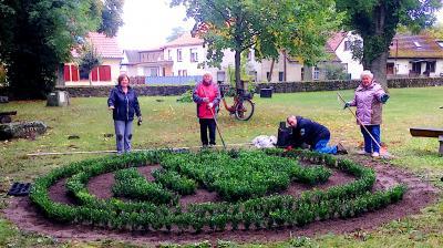 Foto zu Meldung: Pflanzung der Lilie