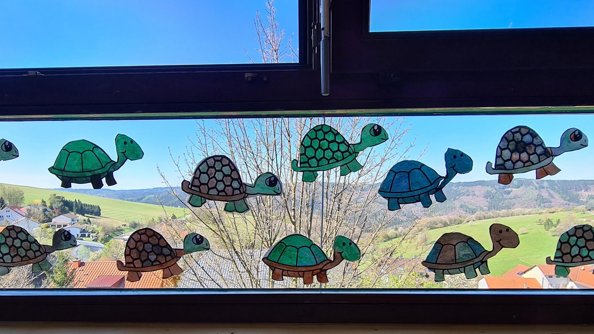 Schildi Fenster