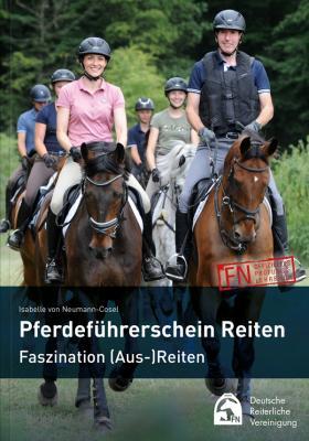 Vorschaubild zur Meldung: Pferdeführerschein Reiten