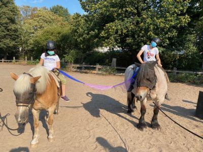 Foto zur Meldung: Wir gehen wieder reiten!