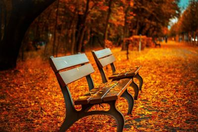 Foto zur Meldung: Wir wünschen schöne Herbstferien
