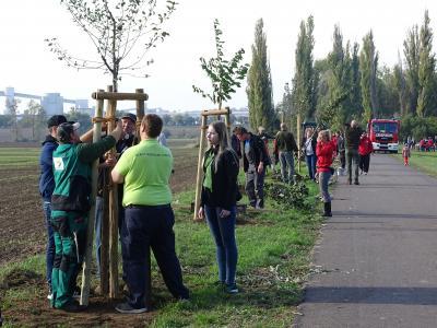 Foto zur Meldung: Baumpflanzaktion zum Tag der Deutschen Einheit