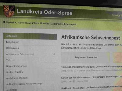 Vorschaubild zur Meldung: Informationen zu Auswirkungen der Schweinepest auf der Landkreisseite