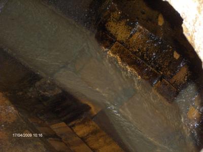 Vorschaubild zur Meldung: Schädlingsbekämpfung im Kanalnetz